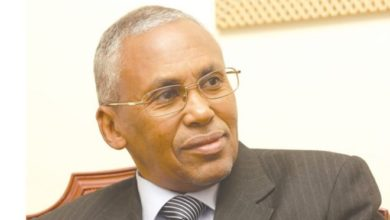 Somaliland FM says UAE did not recognize Somaliland independence