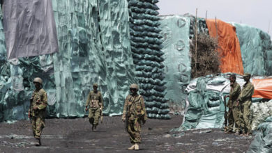 Somalia to host conference on illegal charcoal trade