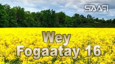 Wey Fogaatay Part 16