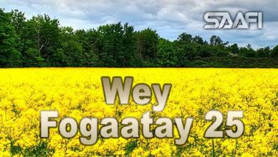 Wey Fogaatay Part 25