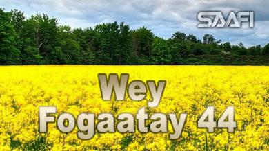 Photo of Wey Fogaatay Part 44