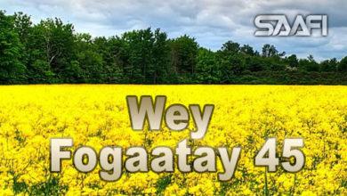 Wey Fogaatay Part 45