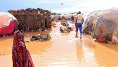 Urgent call to help flood-hit Somalia OIC