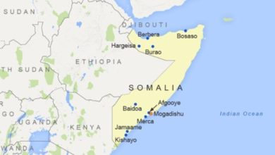 Somalia: 13 militants, 4 Civilians Killed in Market Blast, Fighting