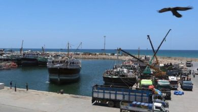 Photo of Harbouring ambitions: Gulf states scramble for Somalia