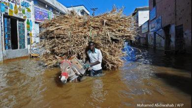 Photo of OCHA SOMALIA Flash Update 5: Humanitarian impact of heavy rains