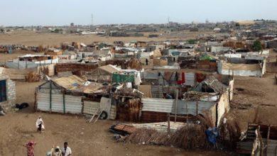 Somaliland's cyclone victims requires urgent humanitarian aid: charity