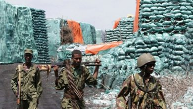 Somalia calls for international cooperation to stop illegal charcoal trade