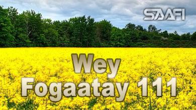 Wey Fogaatay Part 111 Halkan riix oo daawo