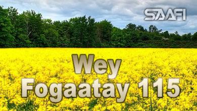 Photo of Wey Fogaatay Part 115 Halkan riix oo daawo