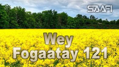 Photo of Wey Fogaatay Part 121 Halkan riix oo daawo