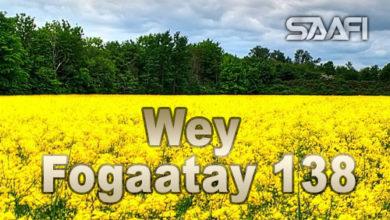 Photo of Wey Fogaatay Part 138 Halkan riix oo daawo