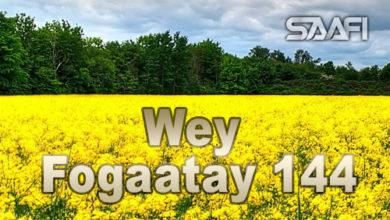 Wey Fogaatay Part 144 Halkan riix oo daawo