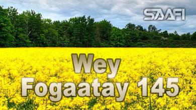 Photo of Wey Fogaatay Part 145 Halkan riix oo daawo