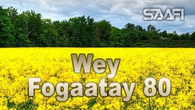 Wey Fogaatay Part 80