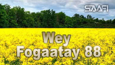 Wey Fogaatay Part 88