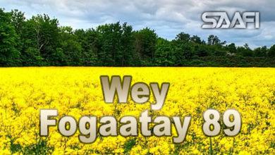 Wey Fogaatay Part 89