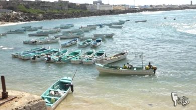 Somaliland fishermen out of work after cyclone Sagar destroyed boats and cold stores