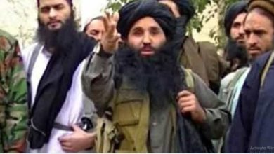 Photo of Pakistani Taliban chief allegedly killed in US drone strike