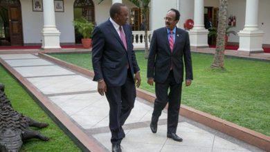 Photo of Somalia backs Kenya's bid to sit on the UN Security Council