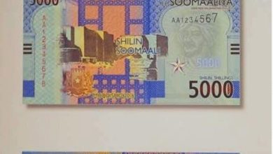 Photo of Somalia urged to fix security, political challenges before printing of new currency