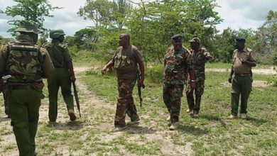 Families blame police and KDF as 46 people reported missing