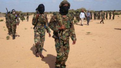 Photo of Al Shabaab returnees claim they were fed up in Somalia
