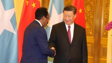 Photo of President Farmajo holds bilateral talks with Xi Jinping