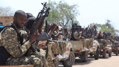 Photo of Somali forces kill 11 Al-Shabaab militants in Gedo region