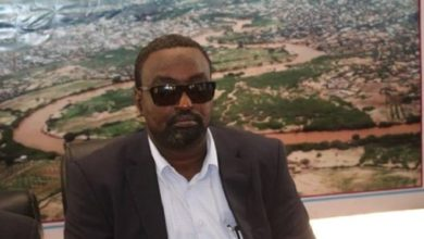 Photo of Somali regional president reappoints former governor for Hiiraan region