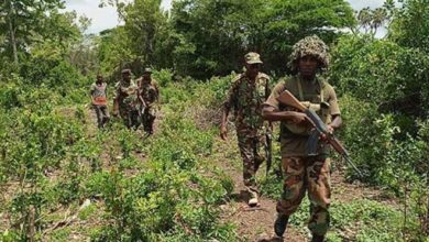 Photo of Hunt on for Shabaab attackers who fled with gunshot wounds