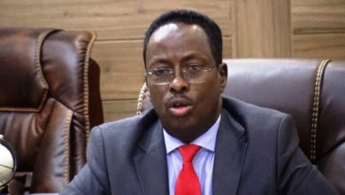 Photo of Somali Minister steals cabinet agenda, draws attention to Somaliland