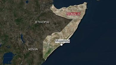 Photo of Somali states to dedicate 1,000 soldiers each in Al-Shabaab combat