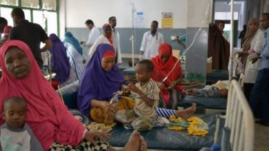 Photo of WHO seeks to contain cholera outbreak in Somalia amid decline in cases