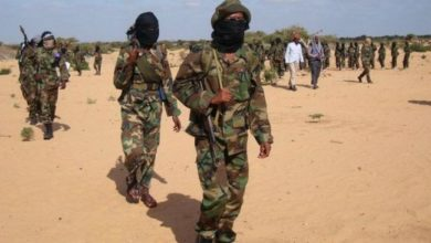 Photo of Al-Shabaab militants release 2 herders after 5 days in captivity