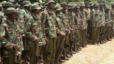 Photo of 690 Police Reservists to be deployed along Kenya-Somalia border