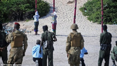 Photo of Somalia Military Executes 6 Militants Without Trial