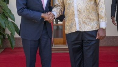 Photo of Somali PM lauds strong partnership with Kenya on security, development