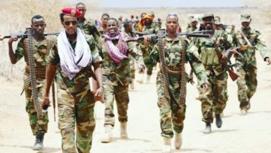 Photo of Nearly 80 Militants Killed In Lower Jubba Region