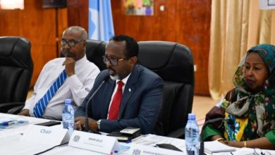 Photo of Federal Government of Somalia launches national strategy for public awareness