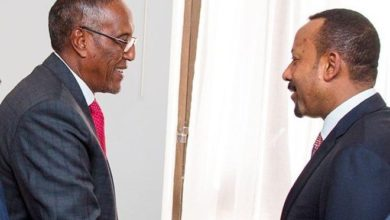 Photo of Somaliland president, Ethiopia PM hold trade talks in Addis