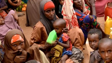 Photo of Over 1.5 mln Somalis still face acute food crisis: UN report