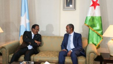 Photo of Somali President In Djibouti For Talks With Guelleh