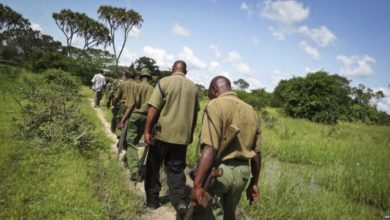 Photo of Kenya tightens security at borders with Somalia