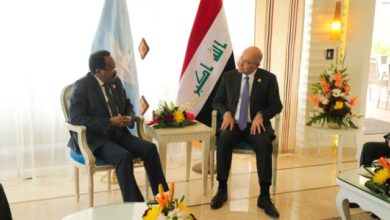 Photo of Somali President Meets With Foreign Leaders In Egypt