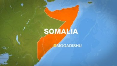 Photo of Eight killed in blast at Somali market: official