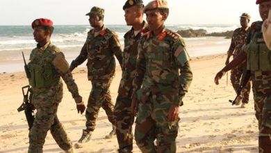 Photo of Somali leader makes military changes to curb rising insecurity