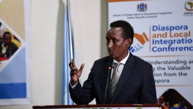 Photo of Somalia's government seeks ways to integrate diaspora and local Somali professionals