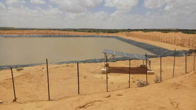 Photo of New dam brings water to dry Puntland villages