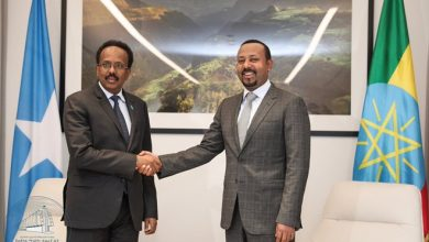 Photo of PM Dr Abiy holds talks with Somali President